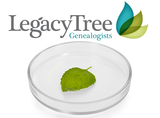 Genealogy author and educator Thomas MacEntee reviews the DNA Discovery Plan service from Legacy Tree Genealogists and discovers the next steps in his DNA research journey!