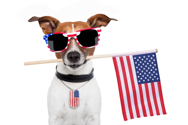 Independence Day sales still going strong! Save 50% at on Ancestry memberships and more! Get the latest deals at Genealogy Bargains today, Thursday, July 4, 2019!