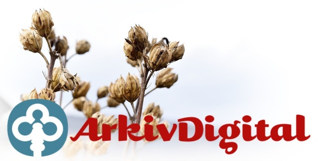 Use your Arkiv Digital 3-month membership to search for those Swedish ancestors!