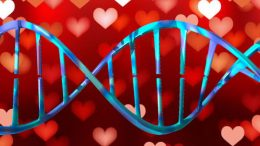 Don't forget! Valentine's Day Sales for DNA tests end TODAY! Get the latest deals at Genealogy Bargains today, Wednesday, February 14, 2018