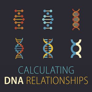 "Calculating DNA Relationships: Aunts, uncles, cousins...we know what those terms mean, right? But when it comes to genealogy, sometimes the relationships aren't so cut-and-dried, especially when DNA gets involved. In this video presentation, you'll learn how relationships are calculated by the DNA companies, taking into account special situations and covering what ""distant cousin"" means for each."