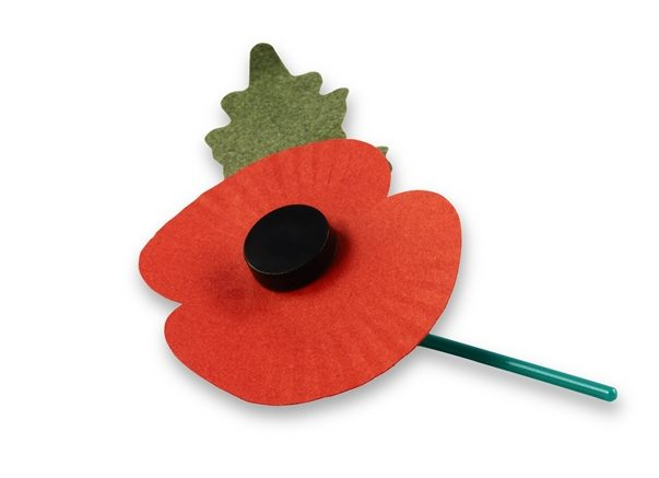 We have your COMPLETE LIST of sites with FREE ACCESS for Remembrance Weekend! See all the deals at Genealogy Bargains for Friday, November 9th, 2018
