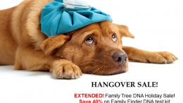 Hangover Sale! Family Tree DNA extends its Holiday Sale - Family Finder DNA test just $49 USD! See all the deals at Genealogy Bargains for Wednesday, January 2nd, 2019