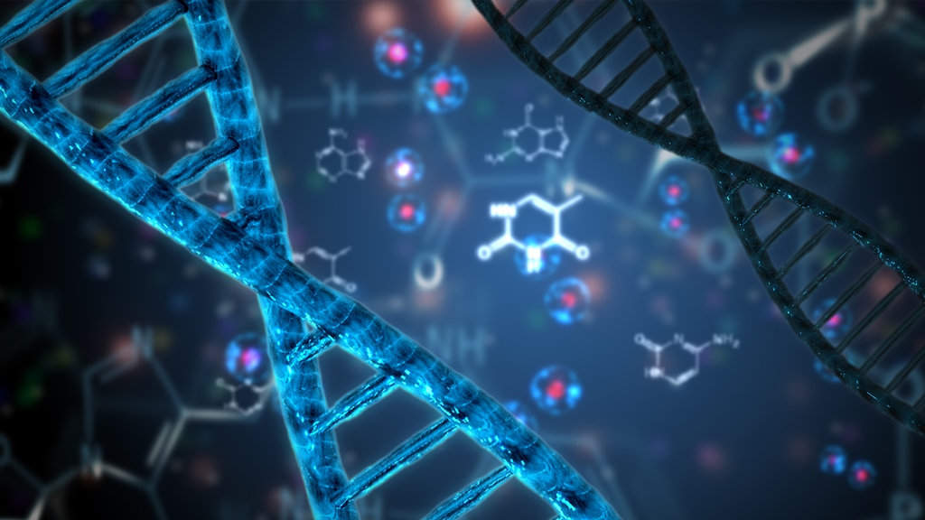 FREE WEBINAR Using DNA to Answer Real Research Questions: Three Case Studies presented by Gail Blankenau, Wednesday, June 10, 2020, 8:00 pm Eastern / 7:00 pm Central / 6:00 pm Mountain / 5:00 pm Pacific. DNA tests provide opportunities for researchers to solve specific research questions. Gail Shaffer Blankenau will demonstrate how to combine DNA results with traditional research methods to make those fascinating DNA results useful. Click HERE to register for FREE - via Legacy Family Tree Webinars.