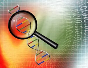 Genealogy Do-Over Step Ten: 1) Reviewing DNA Testing Options and 2) Organizing Research Materials – Digital
